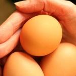 3x na téma vejce a dieta